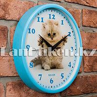 Настенные часы Салют с дизайном котенка голубые
