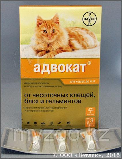 Адвокат д/кошек массой до 4 кг 0,4 мл, 1 пипетка