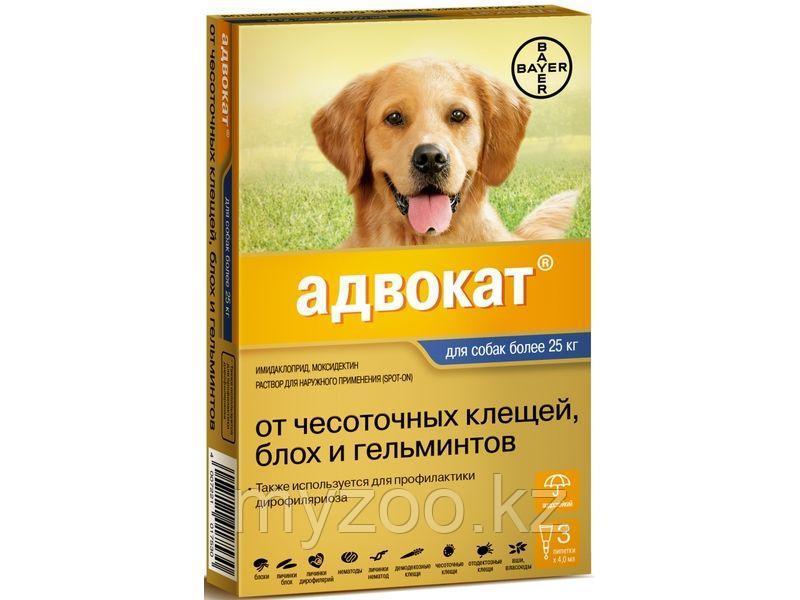 Адвокат д/собак более 25 кг 4 мл, 1 пипетка