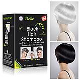 Красящий шампунь для седых волос Dexe Black Hair Shampoo, фото 6