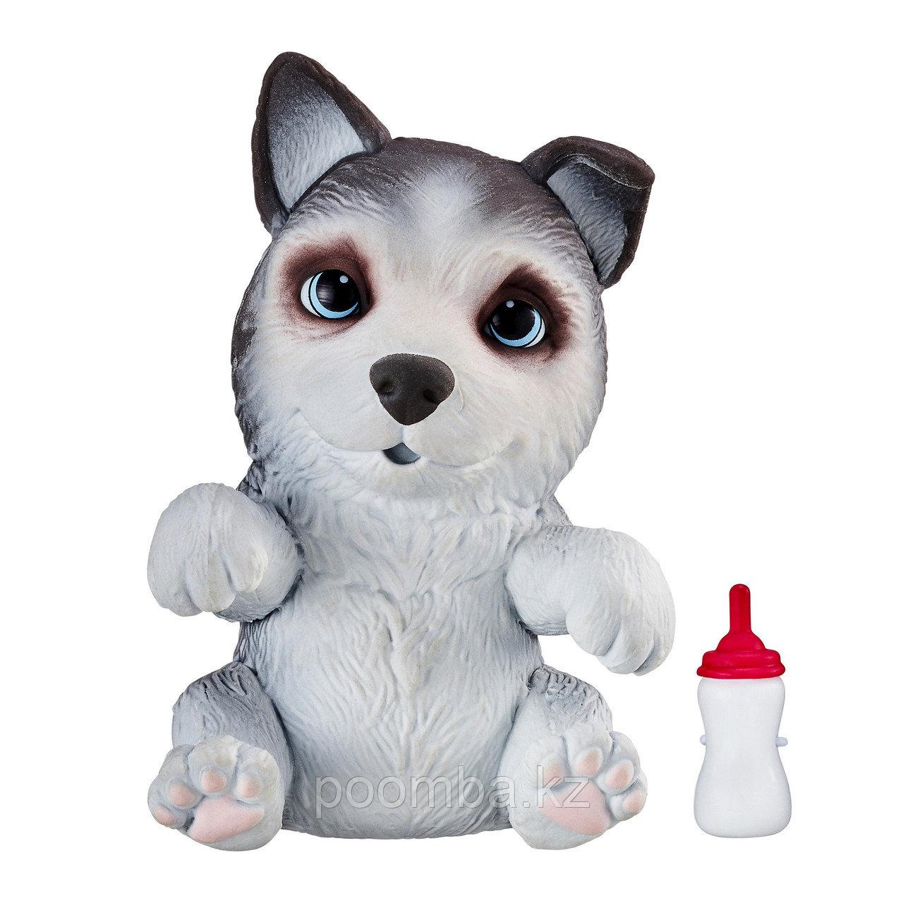 Интерактивная игрушка Сквиши-щенок OMG Pets! Хаски