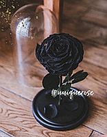 Роза в колбе Premium Black Star Черная Звезда