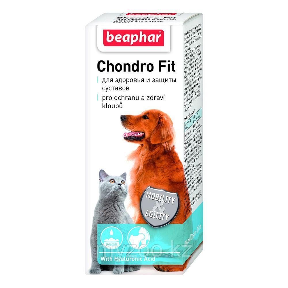 Beaphar Chondro Fit кормовая добавка для собак и кошек 35 мл