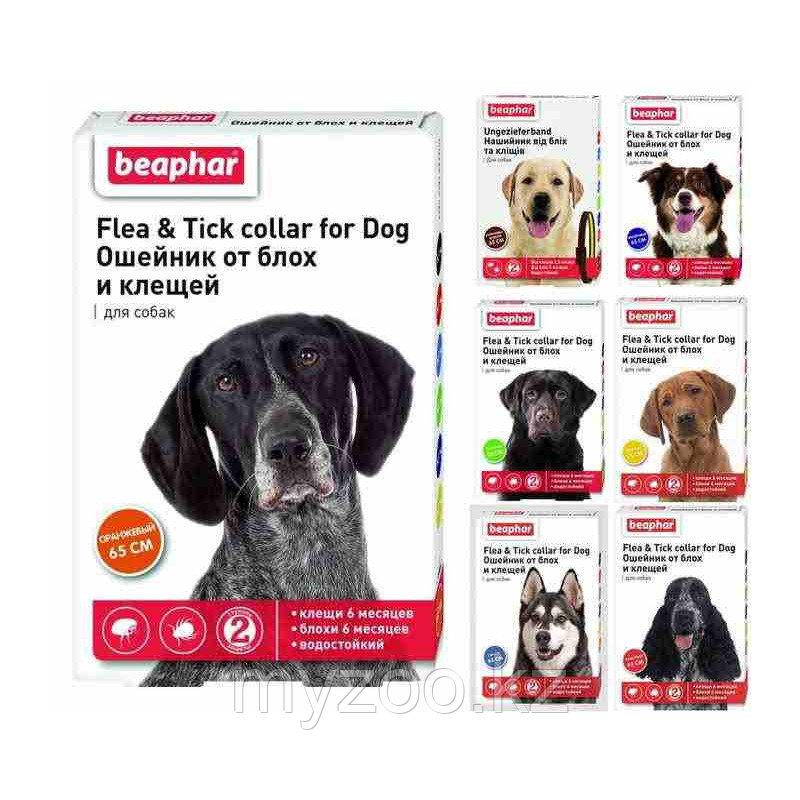 Beaphar Ошейник для собак, 65 см |Защита от блох и клещей, цвета в ассортименте|