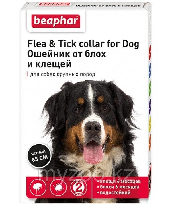 Beaphar Bio Band Plus Dog, 85 см   Ошейник для собак от блох и клещей 
