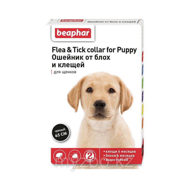 Beaphar, Беафар ошейник для щенков от блох, вшей и клещей, дл. 65см.