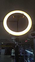 Свет кольцевой  f-260  со штативом от 50см до 2м и регулировкой режимов подсветки, фото 2