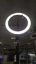 Свет кольцевой  f-260  со штативом от 50см до 2м и регулировкой режимов подсветки, фото 3