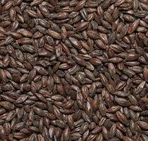 Жжёный 1400 (Курский солод)