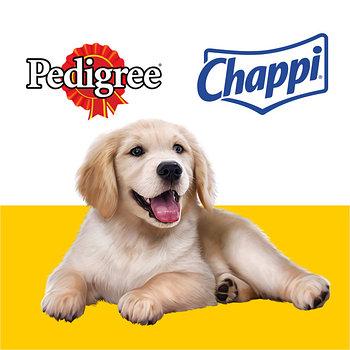 Педигри & Чаппи - корм премиум и эконом класса
