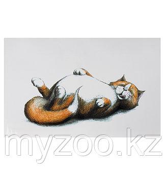Пластиковый коврик под еду, для кошек.  Рыжий кот