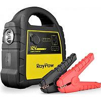 Пуско зарядное устройство RoyPow, фото 1