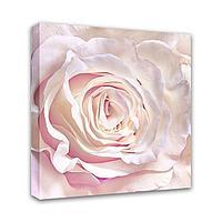 Картина Симфония 0102 Розовая роза; 30*30 см