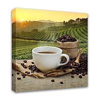 Картина Симфония 0043 Плантация кофе; 40*40 см