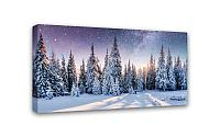 Картина Симфония 0054 Зимний лес; 50*100 см