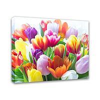 Картина Симфония 0008/1 Букет тюльпанов; 40*50 см
