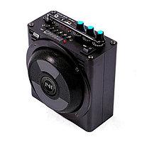 Электронный манок PH Sound 10, фото 1