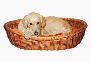 Плетеная корзина для сна. Для мелких пород собак и кошек. Широкая витая кромка. Длина 50 см, фото 2