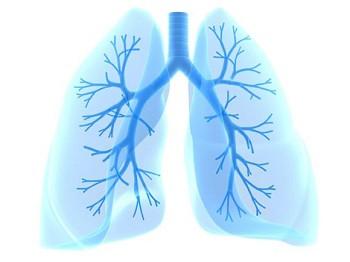 Легенефит - капли для здоровья легких