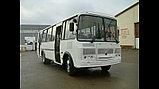 Автобус двухдверный ПАЗ 4234-04 (30 мест), фото 2