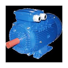 Электрический двигатель (/30-1640)