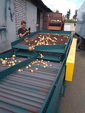 Сортировка-калибровка Картберг 620, фото 2