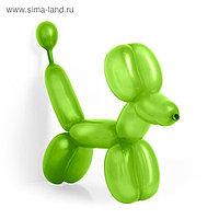 Шар для моделирования 260, пастель, набор 100 шт., цвет светло-зелёный