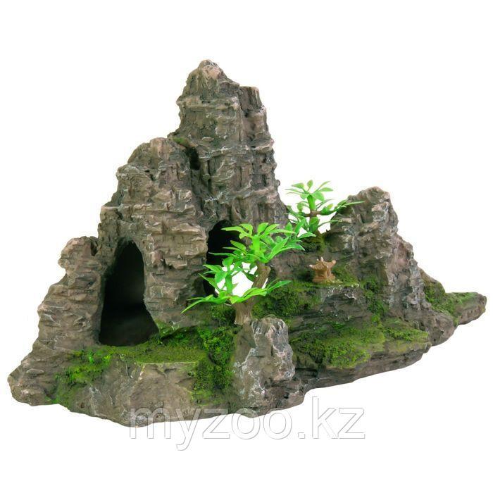 Декорация для аквариума. Гора с растениями 22см