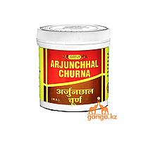 Арджуна порошок (Arjunchhal VYAS), 100гр. Тоник для сердца