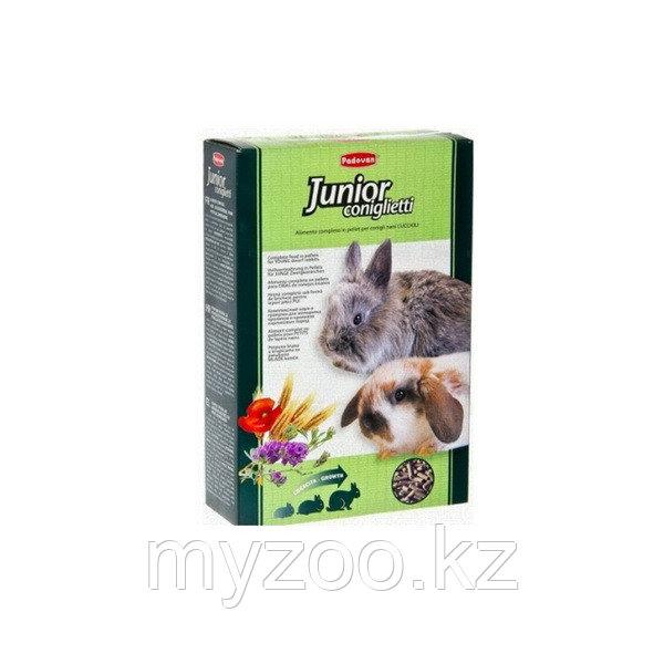 Padovan Корм JUNIOR Coniglietti комплексный/основной  д/кроликов и молодняка (850г)