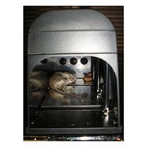 Электронная мышеловка GH-190, фото 2