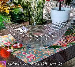 Салатник стеклянный, с узором. Цвет: Полупрозрачный.