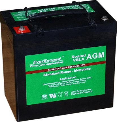 Аккумуляторная батарея EverExceed ST-1255, фото 2