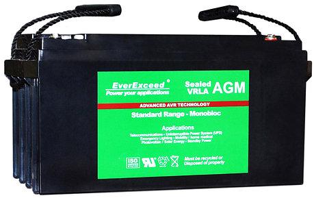 Тяговый аккумулятор EverExceed ST-1265, фото 2