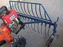 Грабли (AGROLUXE) для мотоблока, крепление спереди мотоблока, фото 2