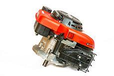 Двигатель WEIMA WM1P65F с вертикальным валом, фото 2