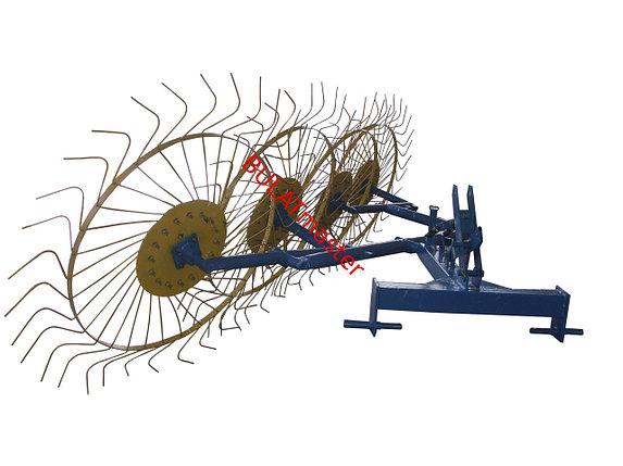 Грабли ворошилки (Солнышко) для мини-трактора (AGROMARKA) , фото 2