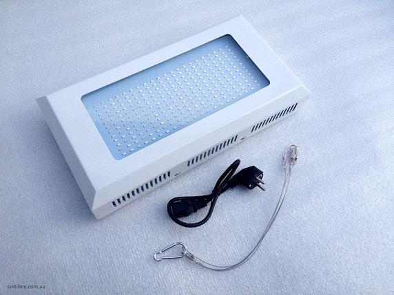 LED фитолампа 300 Ватт (для растений, теплиц и аквариумов), фото 2