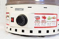 Бытовая электро сушка для овощей и фруктов ProfitM ЕСП2 820вт 20л. (слоновая кость) , фото 2