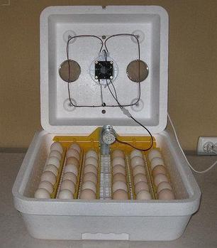 Инкубатор с автопереворотом яиц Веселое семейство 2 ВПТ , фото 2