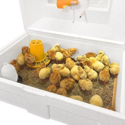 Брудер (Ясли) Теплуша для цыплят, бройлеров, перепелов до 100 голов