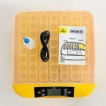 Инкубатор автоматический Теплуша Europe 56 яиц (ТЭН+влагомер+овоскоп), фото 2
