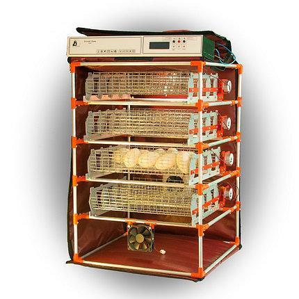 Автоматический инкубатор-конструктор на 112 яиц водоплавающих птиц, с увлажнителем и автопереворотом