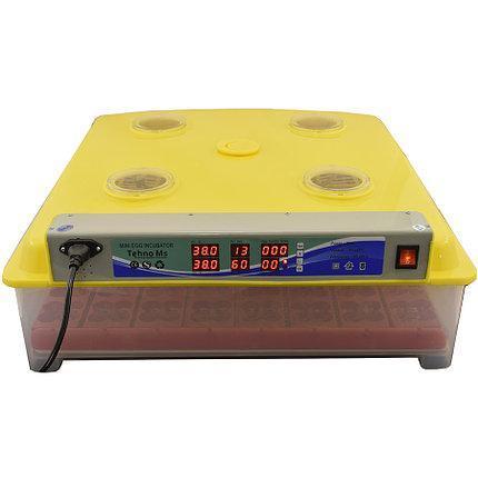 Инвекторный автоматический Инкубатор MS-63/248 (63 куриных, 248 перепелиных)