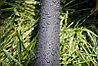Шланг туман Presto-PS лента Silver Spray длина 200 м, ширина полива 5 м, диаметр 25 мм (402007-5), фото 6