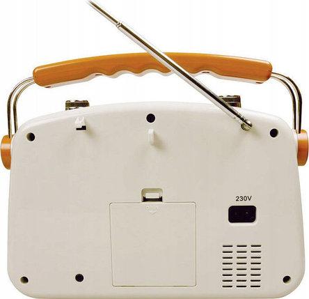 Радиоприемник AEG РЕТРО NR 4155, фото 2