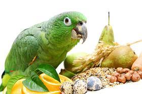 Витамины и добавки