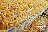 Смазка.ру Многоцелевая пластичная смазка X-Food 3015-2 с пищевым допуском, картридж 400 мл, фото 2