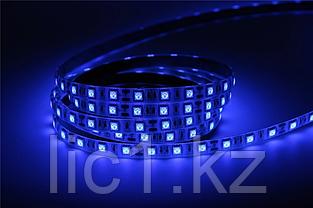 Светодиодная лента 5050 синий