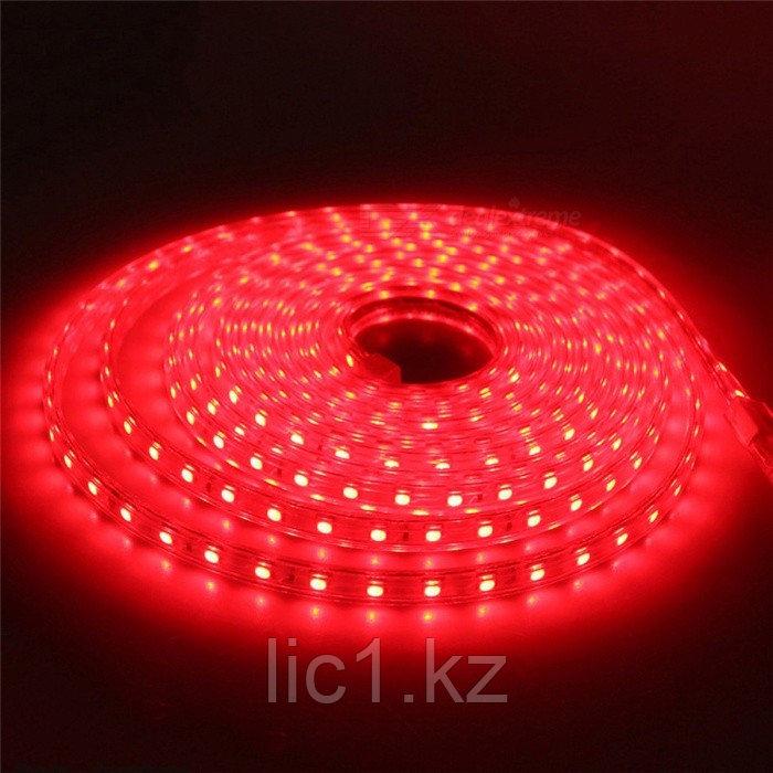 Светодиодная лента 5050R красный